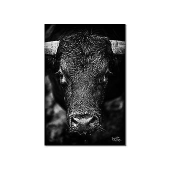 Zwart-wit bull board de look