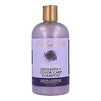 Shampoo Purple Rice Water Shea Moisture (370 ml)