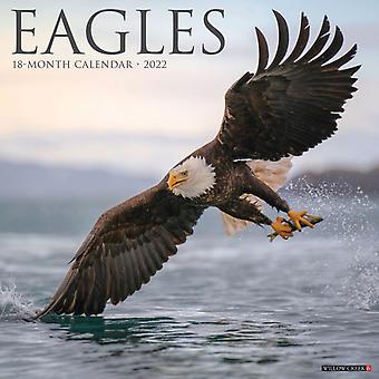 Eagles 2022 Wall Calendar by Willow Creek Press