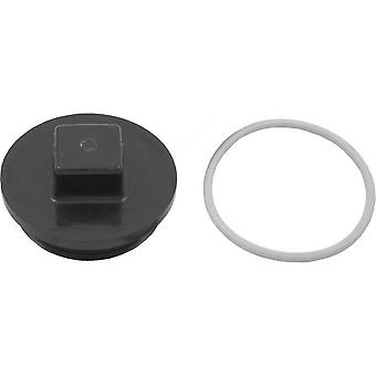 "Carvin Jacuzzi 43-3092-02-R 2"" Plug with Gasket"