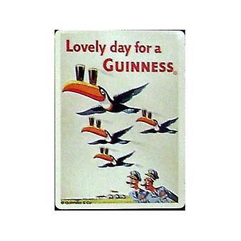 Aimant de réfrigérateur en métal Guinness Flying Toucans