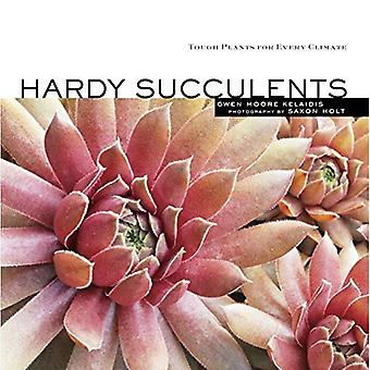 HARDY SUCCULENTS by