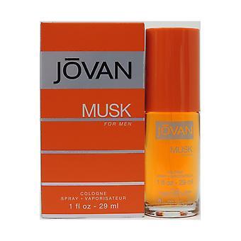 Jovan Musk voor heren Keulen spray 29ml
