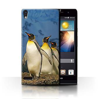 STUFF4 Fall/Abdeckung für Huawei Ascend P6/King Pinguine/Arctic Tiere
