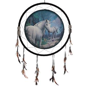 Decorative Lisa Parker The Journey Home 60cm Dreamcatcher X 1 Pack