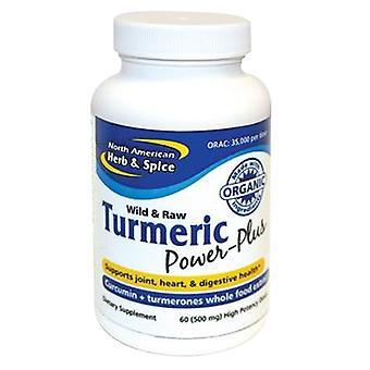 North American Herb & Spice Curcuma Power-Plus, 60 Softgels