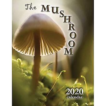 The Mushroom 2020 Calendar