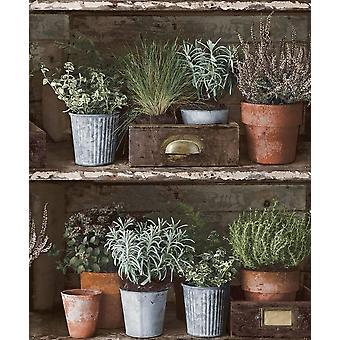 Facade Flower Pot Wallpaper