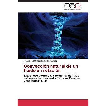 Conveccion naturlige de Un Fluido no Rotacion av Hernandez Hernandez Ivonne Judith