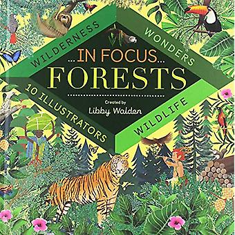 In Focus - Forests by Libby Walden - 9781848578074 Book