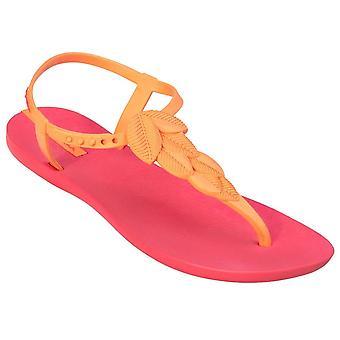 Ipanema Lara 2584323564 universal summer women shoes