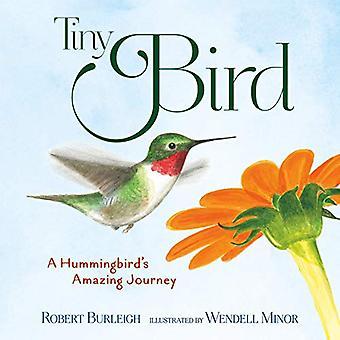 piccolo uccello: un colibrì's incredibile viaggio