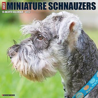 Just Miniature Schnauzers 2022 Wall Calendar Dog Breed by Willow Creek Press