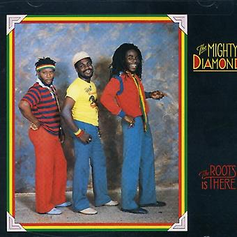 Mighty Diamonds - Roots Is There [CD] USA import