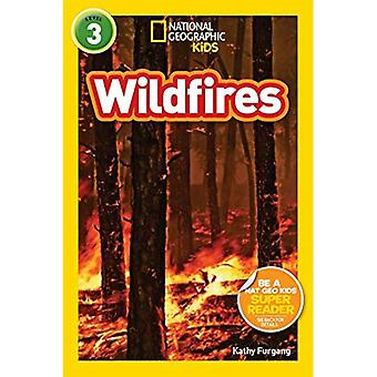 Bränder (nationella geografiska läsare: nivå 3)