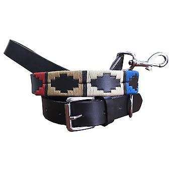 carlos diaz genuine leather  polo dog collar and lead set cdhkplc81