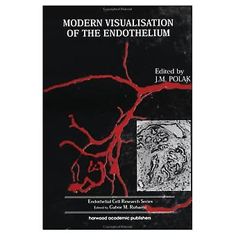 Modern Visualisation of the Endothelium