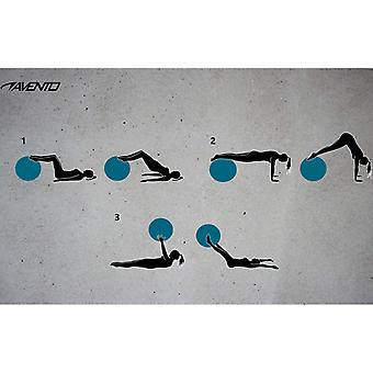 Avento Fitness-/Gymnastikball Durchm. 75 cm Blau