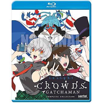 Gatchaman Crowds Insight [Blu-ray] USA import