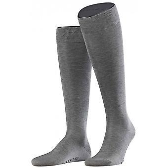 Falke ברכיים גבוהות גרביים-אפור בהיר