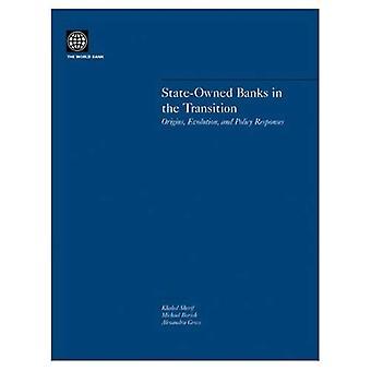 Staatsbedrijf banken in de overgang: oorsprong, Evolution, and Policy Responses
