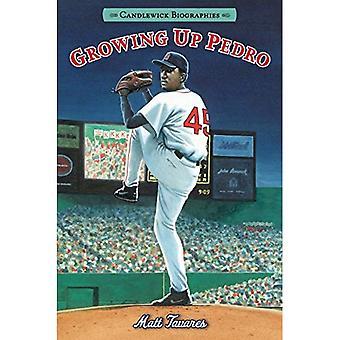 Growing Up Pedro: Comment les frères Martinez fait de la République dominicaine complètement vers les ligues majeures (Candlewick Biographies)