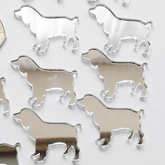 Springer Spaniel Dog Mini Craft Sized Acrylic Mirrors (10Pk)