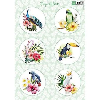 Marianne Design 3D Decoupage sheet Tropical birds VK9561 A4