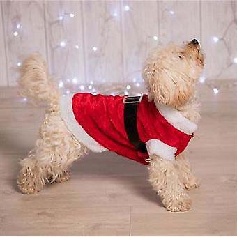 Noel Dükkanı Köpekler Santa Suit