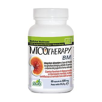 Micotherapy Bm 60 capsules