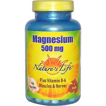 Nature's Life, Magnesium, 500 mg, 100 Capsules