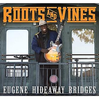 Eugene Hideaway Bridges - Roots & Vines [CD] USA import