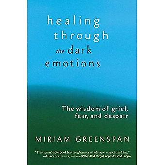 La guérison par les émotions sombres: la sagesse de chagrin, de peur et de désespoir