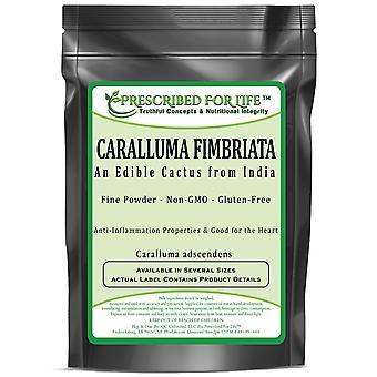 Caralluma fimbriata-um cacto comestível do pó de India