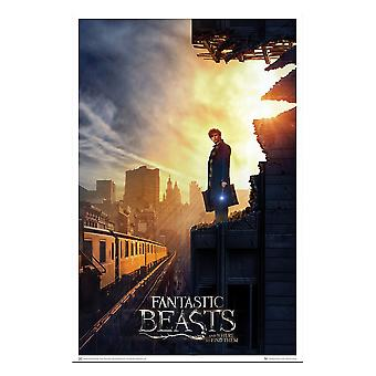 Poster - Fantastic Beasts - Art Print Amid the Rubble 27x40